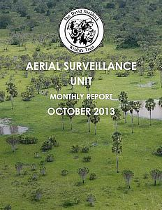 Aerial Survelliance Report for October 2013