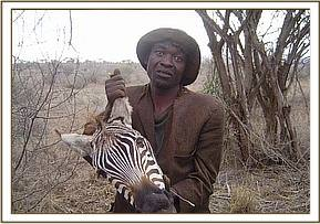 Poacher carrying zebra head