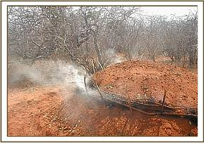 Charcoal burning at Sagala ranch
