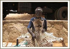 Poacher arrested with Cheetah skin