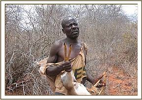 A poacher with a snared Dikdik