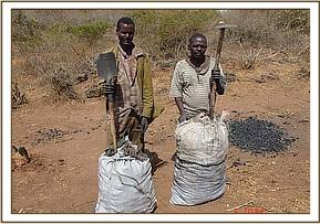 The two arrested charcoal burners