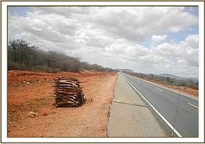 wood along the Mombasa- Nairobi highway