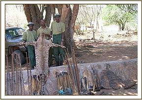 Ithumba team with arrows, cheetah skin & snares