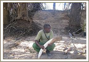 Elephant tusks recovered, hidden near the river