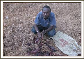 An arrested poacher