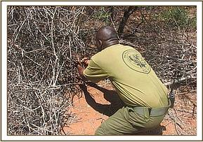 A team member lifting a snare