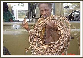 A poacher, arrested in Ziwani,  with his snares