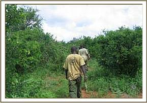 The Ithumba de-snaring team patrols the river