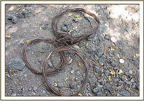 Recovered snares