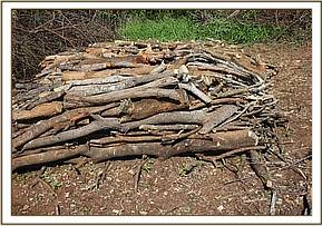 Wood for charcoal kilns