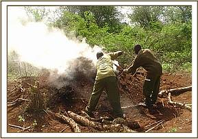 Destroying a charcoal kiln at wayani