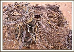 Snares collected by the Chyulu desnaring team
