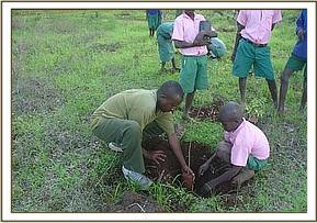 Helping a student plant a tree seedling
