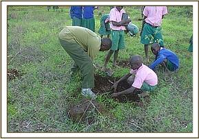 Tree planting at Soto primary school