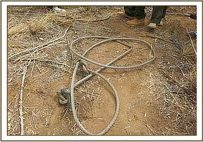 The winch that was removed from the elephant