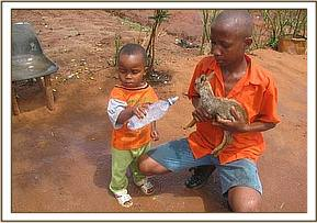 the rescued dikdik with his rescuer