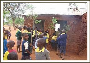 Tree seedlings delivered to a School