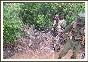 Destroying poacher's hideout at Tundani area