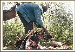 The arrested poacher collecting the bushmeat