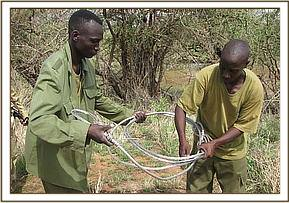 Team members with a large snare
