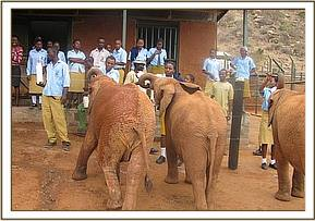 The students visit the DSWT Orphans