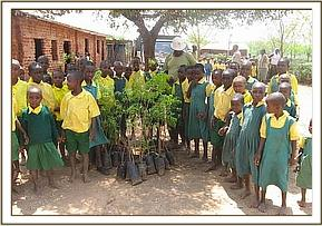 Tree seedlings given to Ngiluni primary