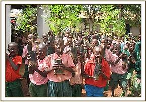 Matangini primary gets tree seedlings