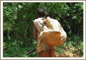 Poacher carrying his wares to the road