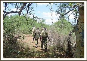 The Ziwani desnaring team members on patrol