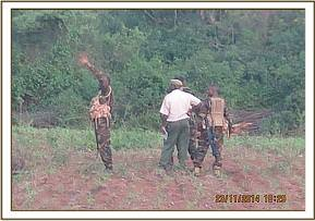 DSWT and KWS controlling two elephants