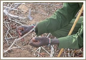 Team member removing a snare