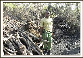 Illegal Logging in Chyulu N. Park