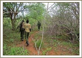 Patrol at chemanyenze area