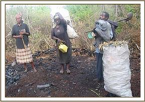 3 arrested charcoal burners