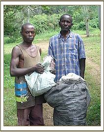 Two arrested charcoal burners with charcoal
