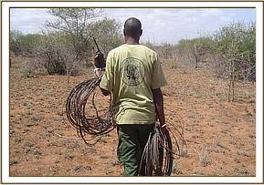 DSWT team member with recovered snares