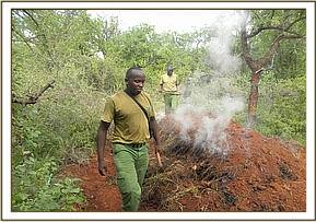 Team destroying illegal charcoal kilns