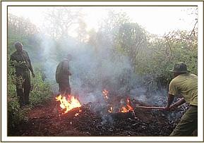Destroying an illegal charcoal kiln