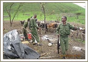 Herds men camp found at Chyulu two area