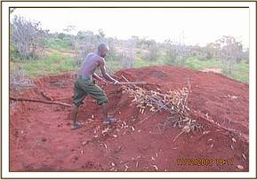 Destroying a charcoal kiln, Wangalla area