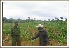 A team member talks with a farmer