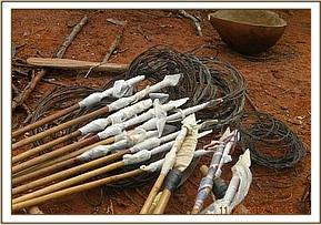 Poison arrows and other weapons recovered