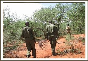The team carrying the snares removed on patrol