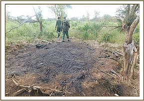 Illegal charcoal burnig at mangelete area
