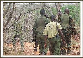 A joined operation of ziwani team and kws rangers