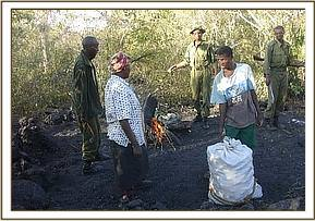 Charcoal burners and their burning site