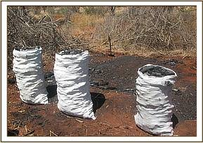 Charcoal ready for sale at Lualenyi