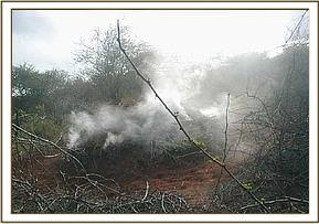Charcoal burning at Kajire