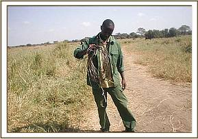 Recovered snares from Lualenyi ranch